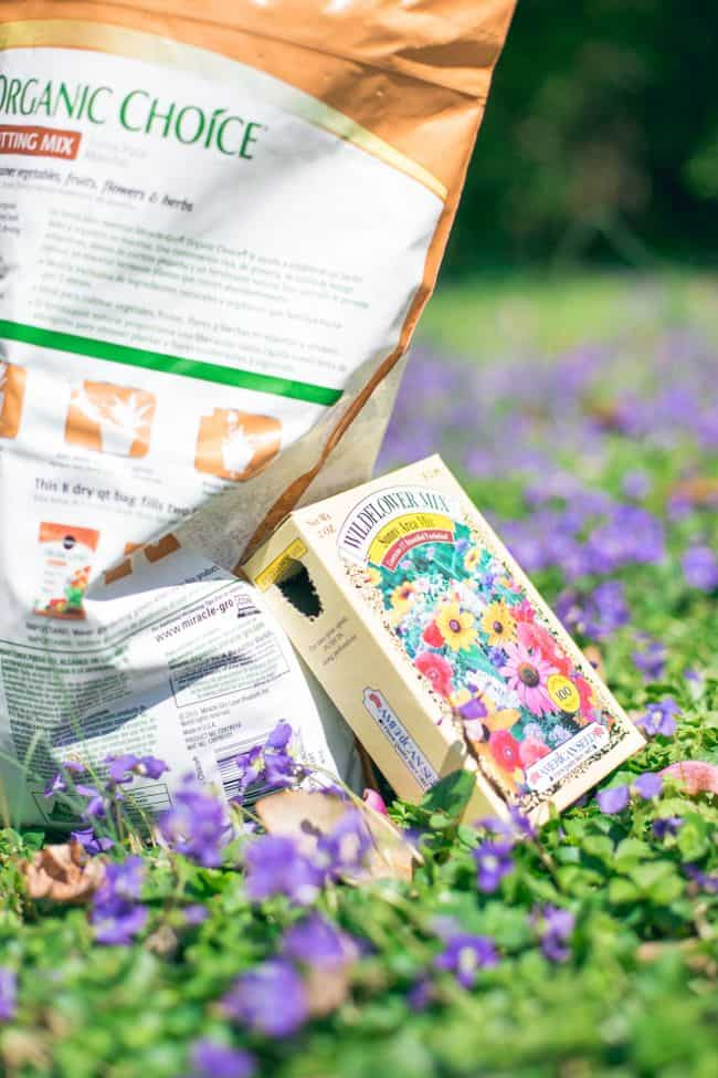DIY Wildflower Seed Bombs | HelloNatural.co