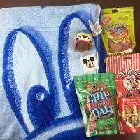 Mickey Monthly Subscription Box Review - July 2015