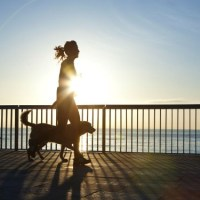 Motionera med hunden