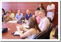 Mesa-Regional-sobre-Hepatitis-Direccion-provincial-sida-san-luis (11)