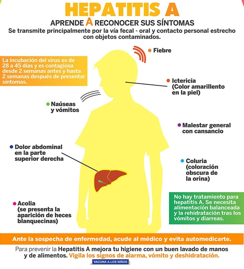 infografiahepatitisa