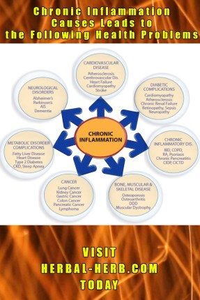 chronic inflammation causes leads to the following health problems