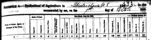 1850 Agriculture Schedule for Wiley A. Murrell, part 1. Ancestry.com
