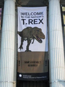 Some assembly required -- eat your heart out, Ikea. Yes, this T. rex would eat your heart out, Ikea. (Photo By: heydayjoe)