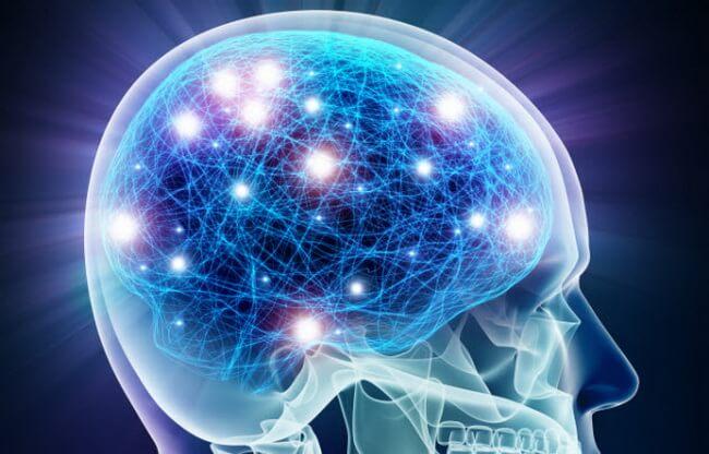6-brain-neurons