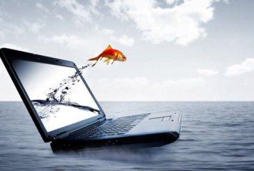 «Разгрузит» ли Интернет человеческую память, став ее «расширением»?
