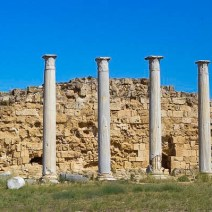 Columns of antique Salamis
