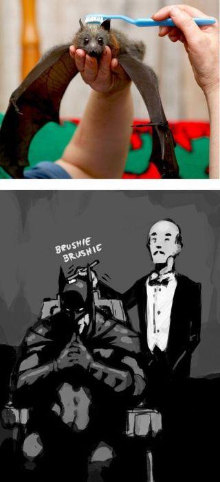 escovando o morcego