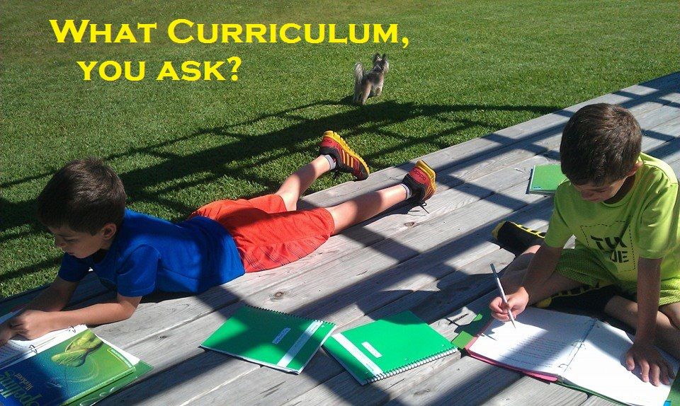 No, I Certainly Will NOT Tell You Which Curriculum is Best!