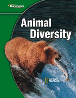 Diversity!