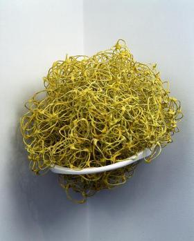 Liz Larner   Devex Yellow