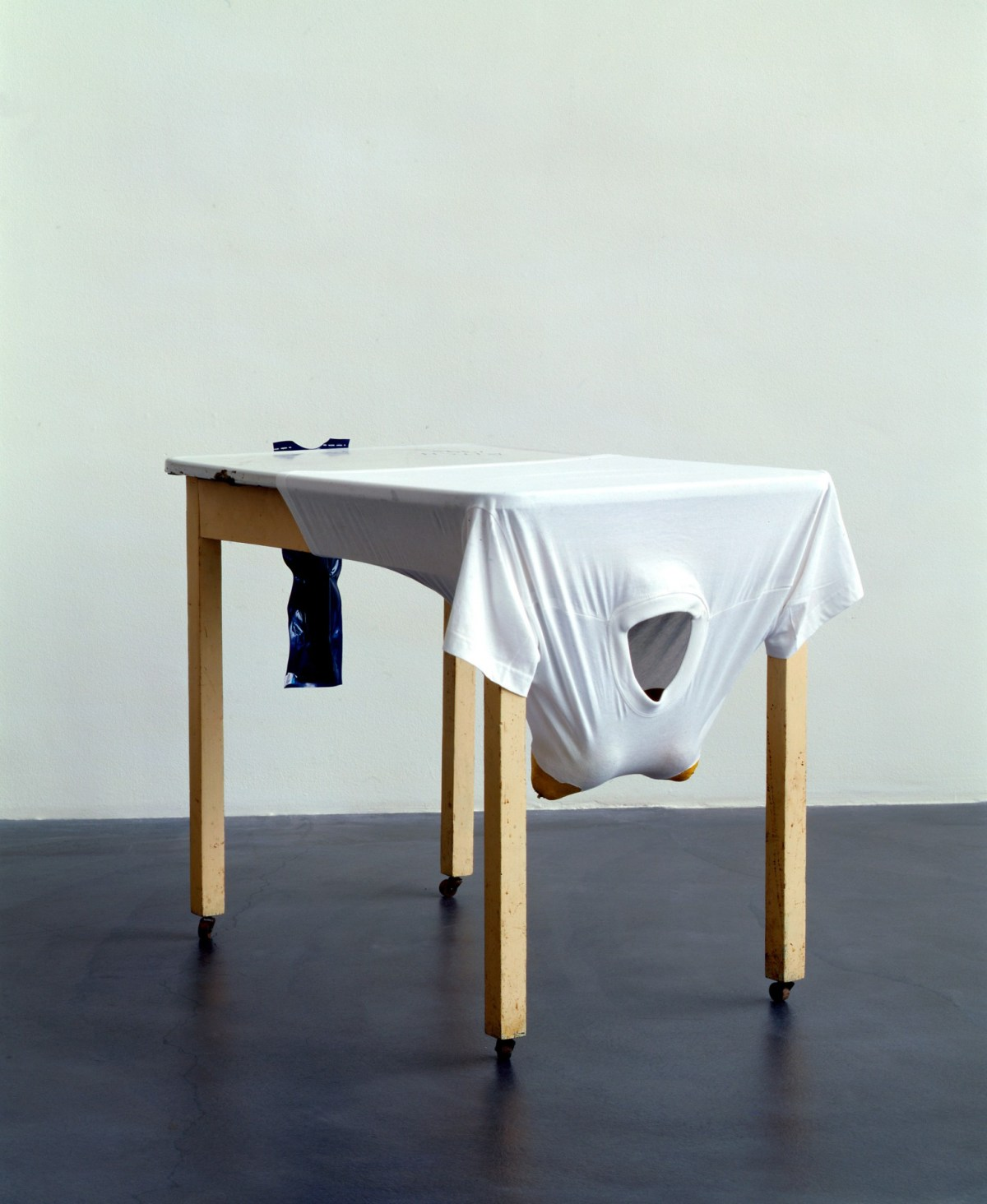 Sarah Lucas  Bitch