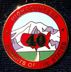 40 State Enameled Pin