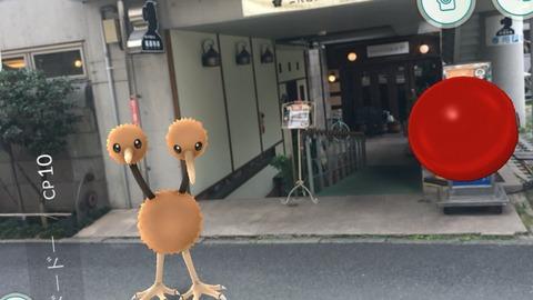 熊本 ポケモンgo