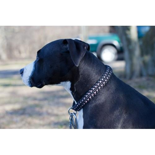 Medium Crop Of Paracord Dog Collar