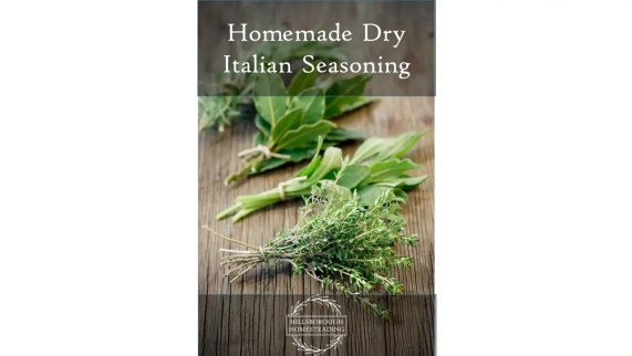 Homemade Dry Italian Seasoning