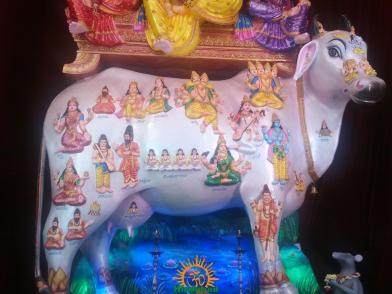 Kamadhenu Vinayaka 2013 at Kamalanagar