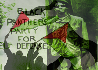 History 101: Black Panthers, Palestinians & The Fight to End Racist Zionism