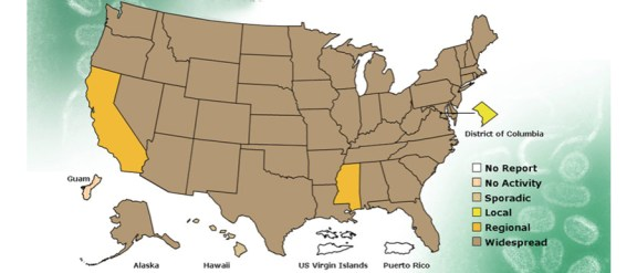 US flu outbreak 2013