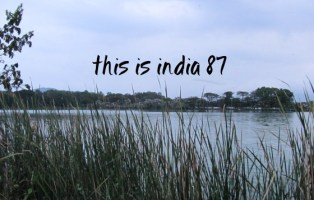 This is India! 87