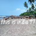 This is India! 97
