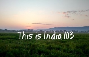 This is India! 103