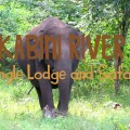 kabini river jungle lodge