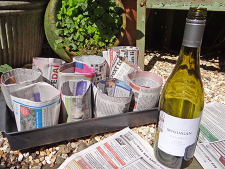 Making pots from newspapers for potting on seedlings
