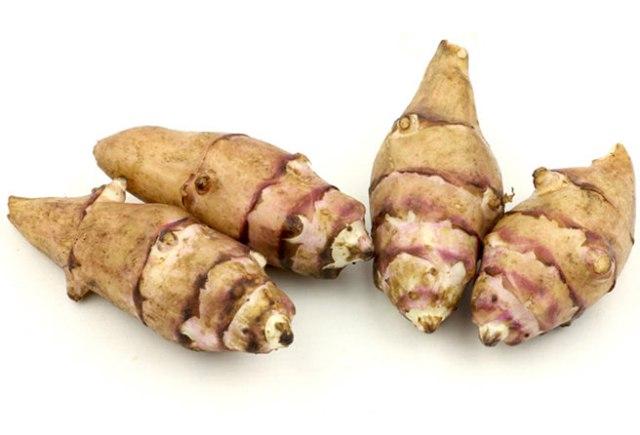 Helianthus tuberosus - Jerusalem artichoke, sunchoke