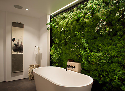 living wall in a bathroom