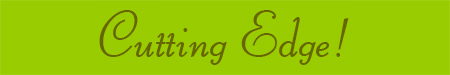 'Cutting Edge!' blog post banner