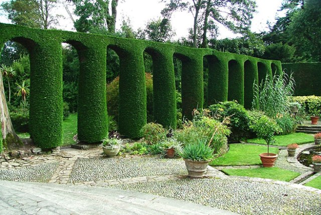 Leylandii topiary in the shape of a viaduct at Newtownards, Portaferry Road, Mount Stewart, Northern Ireland