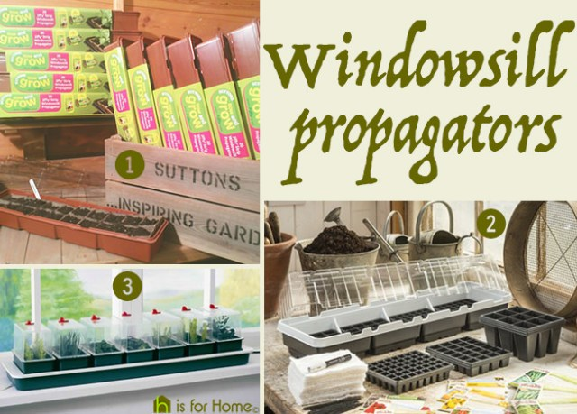 Windowsill propagators | H is for Home