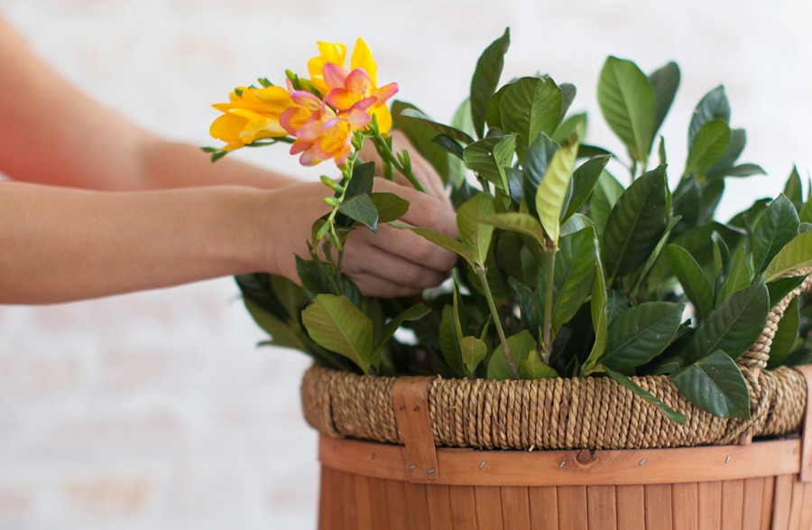 Aprenda a montar incríveis arranjos de flores