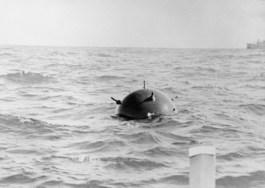 Foto van een willekeurige zeemijn (Wiki)