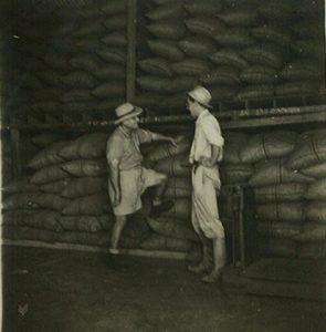 Samen met een assistent (links) en op de achtergrond de oogst