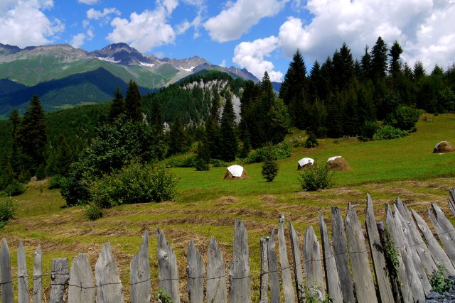 Beautiful landscape of hills and trees with a fence in the foreground - Near Mestia, Svaneti region, Georgia
