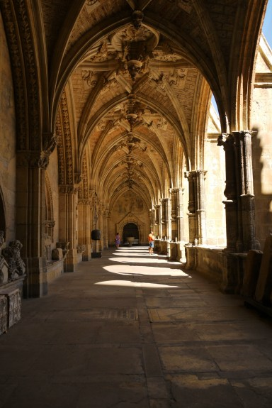 The cloister of Leon Cathedral - Leon, Spain (33)