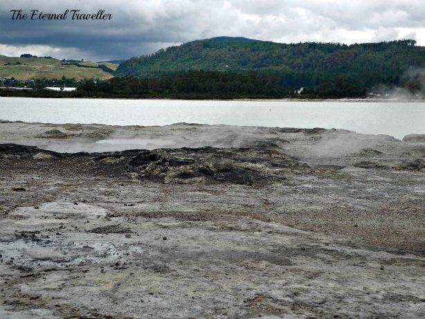 Rotorua For Free – by Carol Sherritt (The Eternal Traveller)