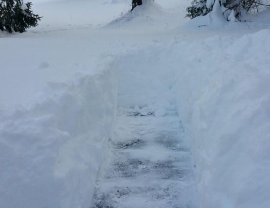 snowdig-low