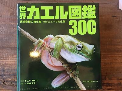カエル図鑑