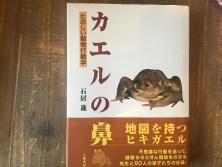 カエルの鼻