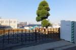 賃貸マンション建設が予定されている日吉本町2丁目の土地、左後方に見えるのが慶應の日吉西館