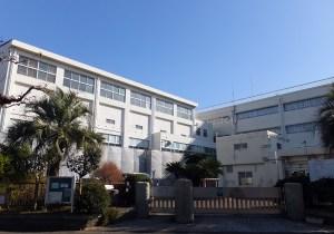 ソテツの木で知られる高田東小学校は日吉本町6丁目と接した位置に建つ