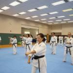 20140101 Kata Seminar (17)