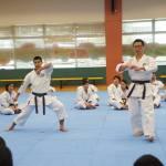 20140101 Kata Seminar (5)