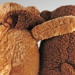 Two stuffed animal bears in embrace