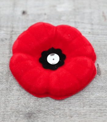 magnetic pin free poppy for kids