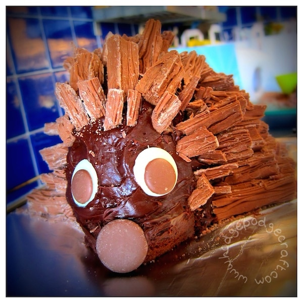 How to make the best chocolate hedgehog cake