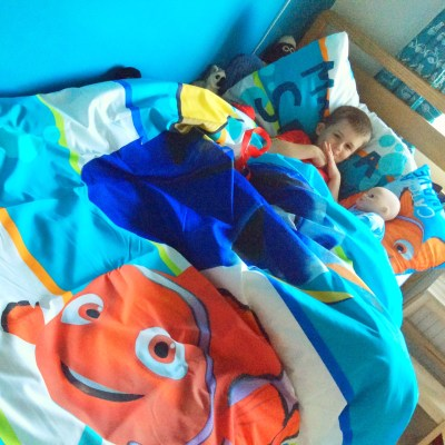 Finding Dory Bedding